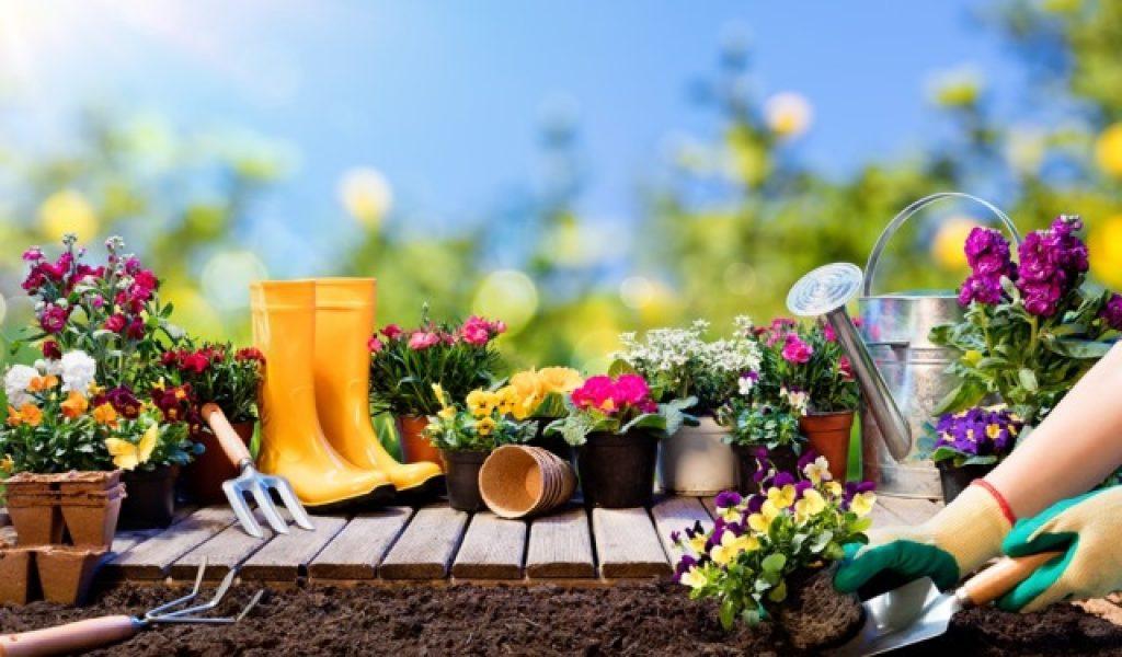 piccoli attrezzi per il giardinaggio